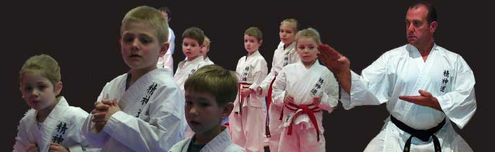 Karate Lessons Narre Warren
